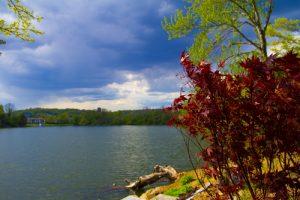 Brady's Pond